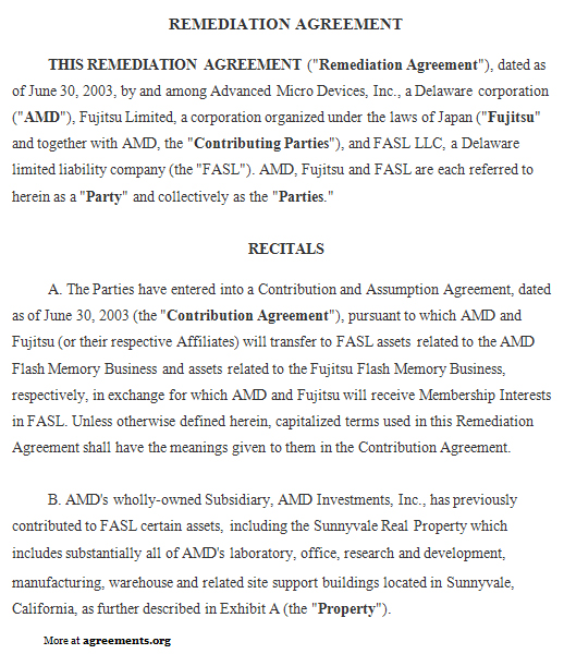 Remediation Agreement Template - Download PDF