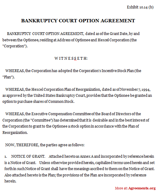 Bankruptcy Court Option Agreement