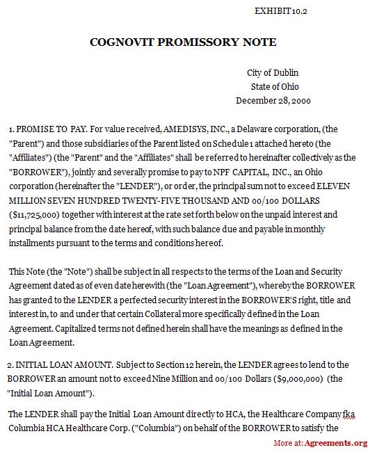 Cognovits Promissory Note Agreement