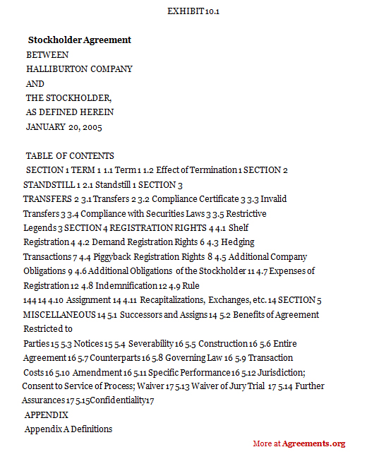 Stockholder agreement