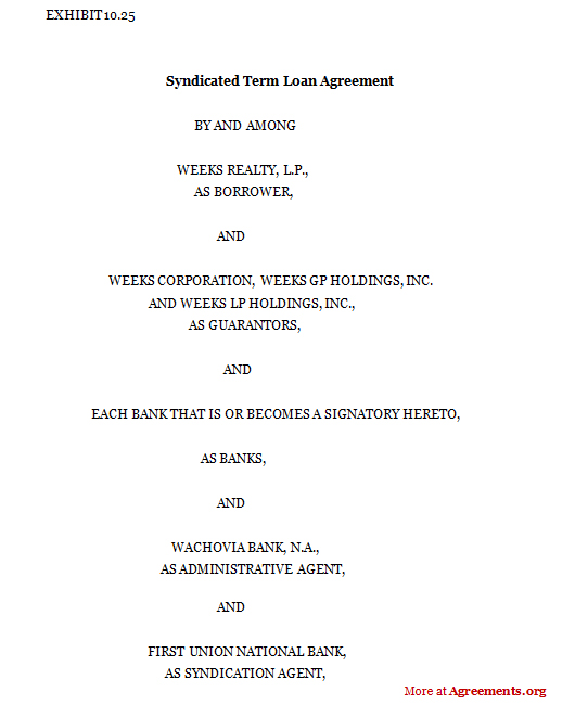 Syndicated term loan agreement