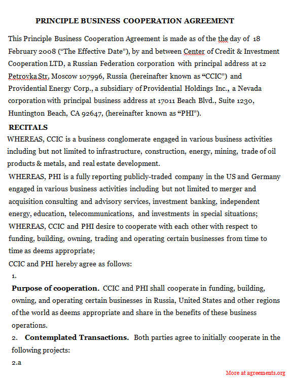 Principle Business Co-operation Agreement - PDF
